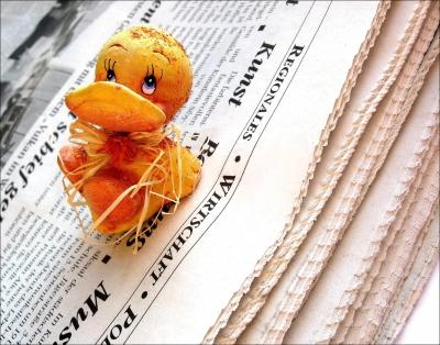 Zeitungsenten sind auch im Internet verbreitet (Bild: berwis / pixelio.de)