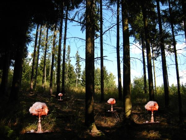Gefährliche Atompilze - Bild: Pixsplash / pixelio.de